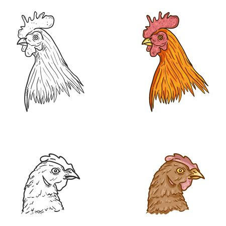 Vector Set of Hen and Rooster Faces. Cartoon and Sketch Illustrations