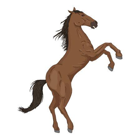 Vector Cartoon Brown Rearing Horse