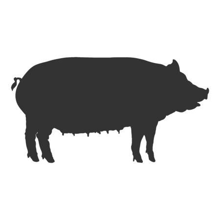 Swine . Vector Black Silhouette of Huge Pig. Shade of Swine.