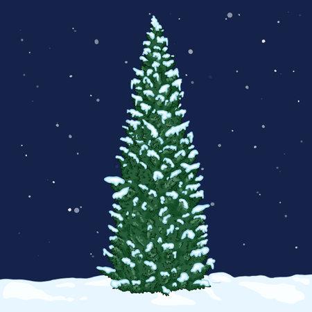 Vector Cartoon Green Pin Tree in Snowy Winter Night. Evergreen Conifer Tree