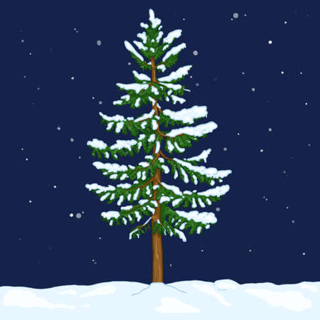 Vector Cartoon Spruce in Snowy Winter Night. Evergreen Conifer Tree
