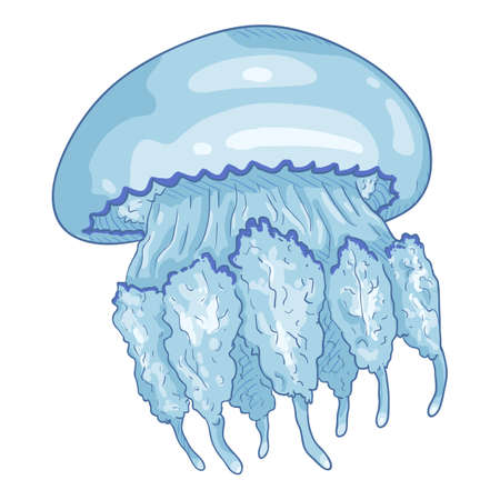 Vector Cartoon Jellyfish on White Background