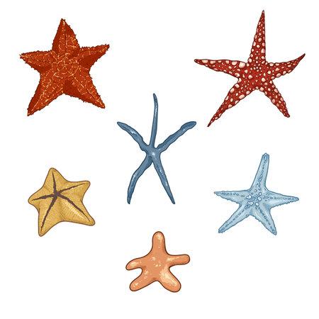 Vector Set of Cartoon Starfishes. Marine life Symbols.