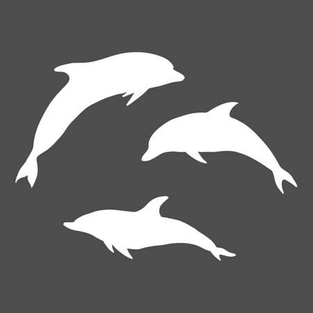 Vector Set of White Sulhouette Dolphins