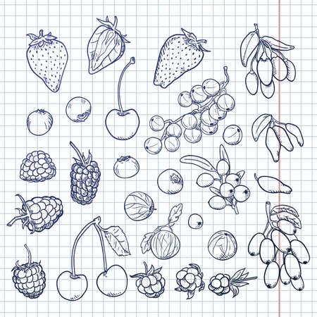 Vector Blue Sketch Set of Berries. Different Types