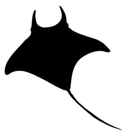Manta Ray Silhouette. Numb-fish Vector Illustration