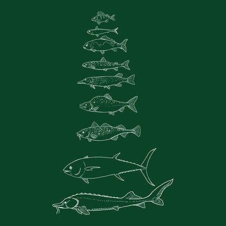 Vector Set of Chalk Fish. Sea, River and Lake Types.