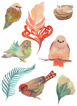 Watercolor painted collection of birds and feathers. Hand drawn design elements isolated on white background. Stock Photo
