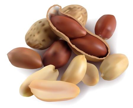 erdnuss: Peanut in einer Schale und r�umte auf wei�em Hintergrund