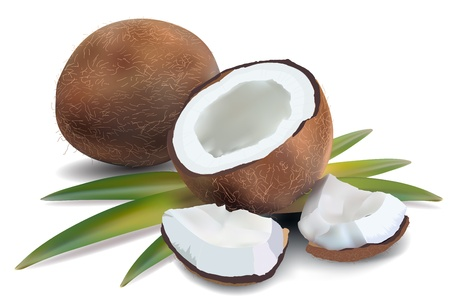 noix de coco: De noix de coco avec des feuilles sur un fond blanc