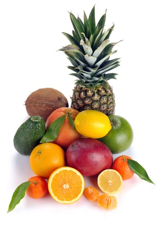 set of citrus and tropical fruits on white background photo