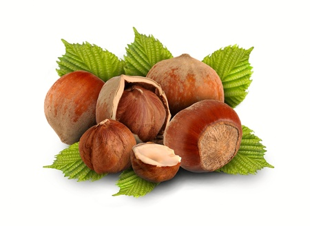whole hazelnuts and nuts with the leaves on a white background