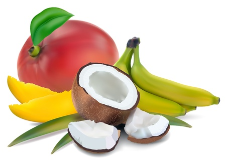 coconut mango and banana on white background Vector