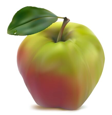 ripened: fresh green-red  apple with green leaf  Illustration