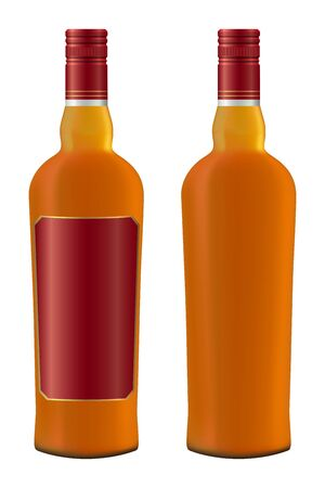 set of whiskey bottles realistic Vector