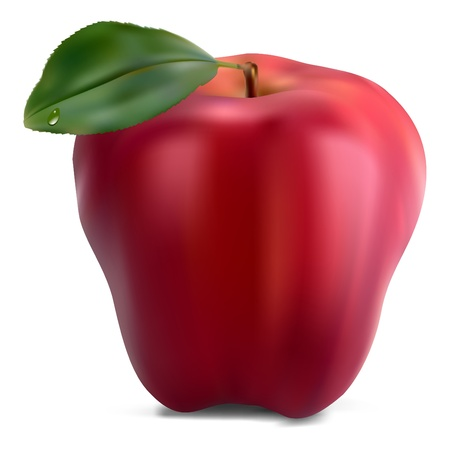ripened: fresh red apple with green leaf  Illustration