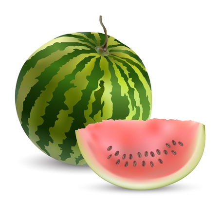 Watermelon with slices  矢量图像