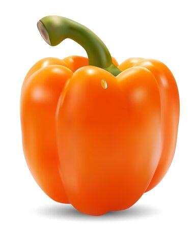paprika: orange paprika on a white background