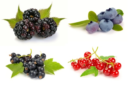 currants: summer ripe berries with leaves on white background
