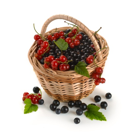 basket of berries on a white background photo