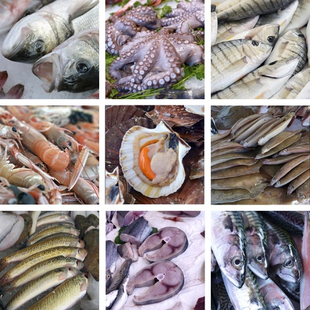fish store: set of images showcases the fishmarket Stock Photo