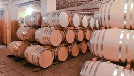 ferment: barrels of wine in the wine cellar
