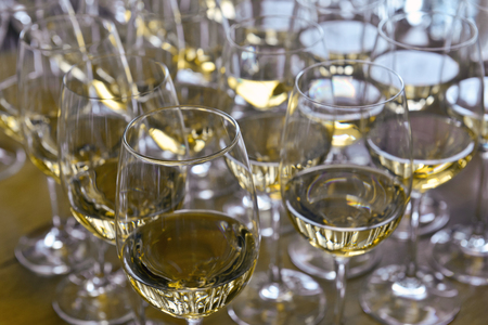 Glasses with wine on table - party background Stock Photo - 23043288