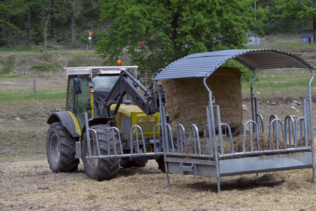 driven: tractor driven hay feeder for cattle