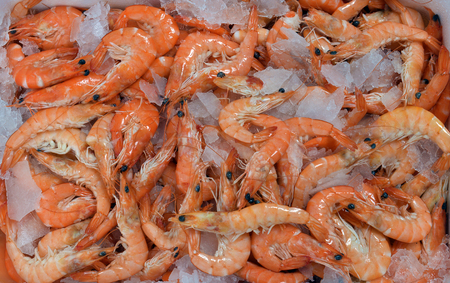 fayre: Freshly cooked prawns - shrimp on a bed of crushed ice