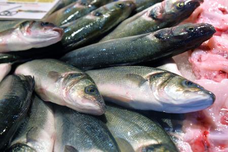 whitebait: sea bass on display fish market