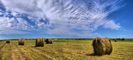 Farmers field with hay bales after cropping Stock Photo