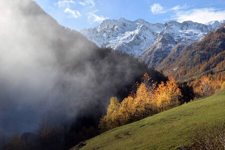 Autumn Alpine landscape with fog and yellow trees Stock Photo