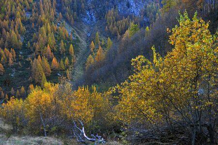 autumn alpine panorama from the small village Stock Photo