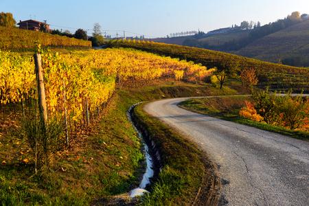 piedmont: panorama of autumn vineyards in Italy, Piedmont Stock Photo