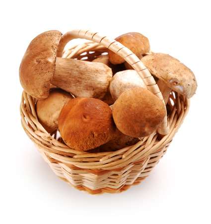 cepe: mushrooms in a basket on a white background
