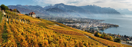 montreux: panorama of autumn vineyards in Switzerland View on Lavaux region by autumn day, Vaud Stock Photo