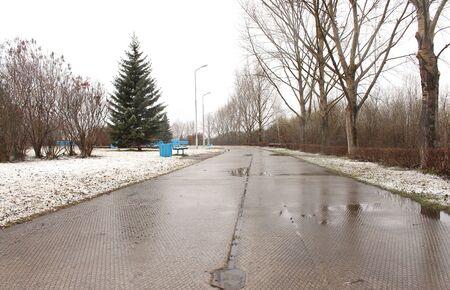 precipitaci�n: Nueva nieve en el parque
