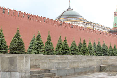 tines: Kremlin wall at the Lenin Mausoleum