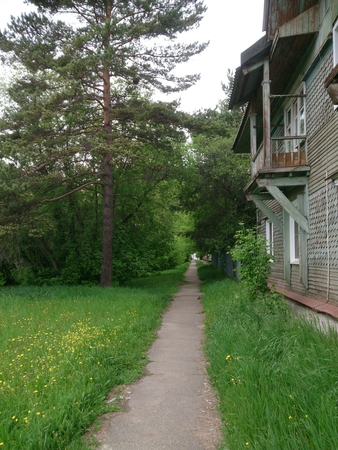 path, spruce and a two-story wooden house