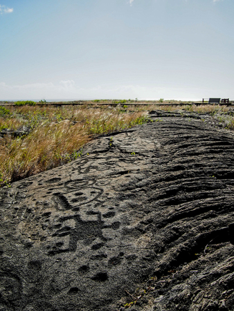 Hawaiian petroglyphs at Puu Loa in Volcanoes National Park.