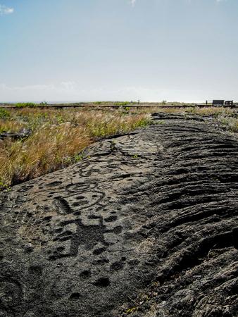 Hawaiian petroglyphs at Pu'u Loa in Volcanoes National Park.
