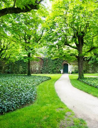 evoking: A path leads up to a cute green door in a stone wall evoking image of secret garden.