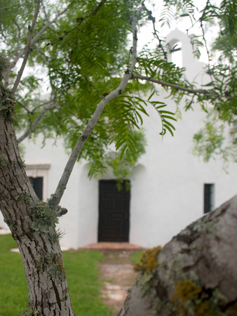 Detail of a mesquite tree with a Spanish mission church in the background at Goliad State Park and Historic Site in Goliad Texas. Standard-Bild