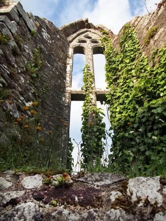 A chapel window in the ruins of Bridgetown Priory near Castletownroche in Cork County, Ireland.