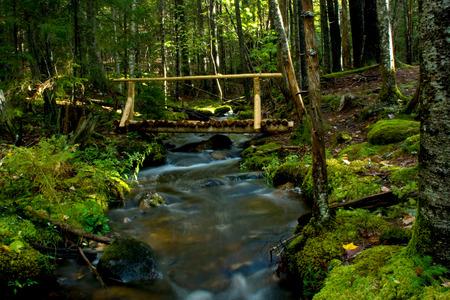 A rustic wooden bridge spans a rushing stream