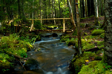 A rustic wooden bridge spans a rushing stream