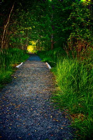 A gravel hiking path with light in distance on a summer morning in Acadia National Park near Bar Harbor, Maine. Standard-Bild