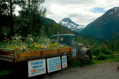 An old truck with signs advertising gold panning in Alaska. 報道画像