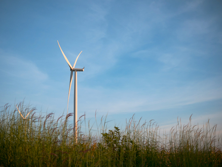 Close up wind turbines in grass field with blue sky background. Select focus shallow depth of field. Banque d'images