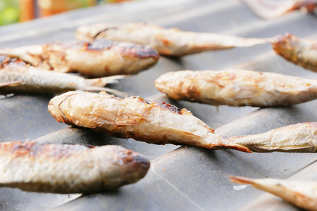 Close up dried grilled fish placed on zinc with sunlight. Select focus shallow depth of field.